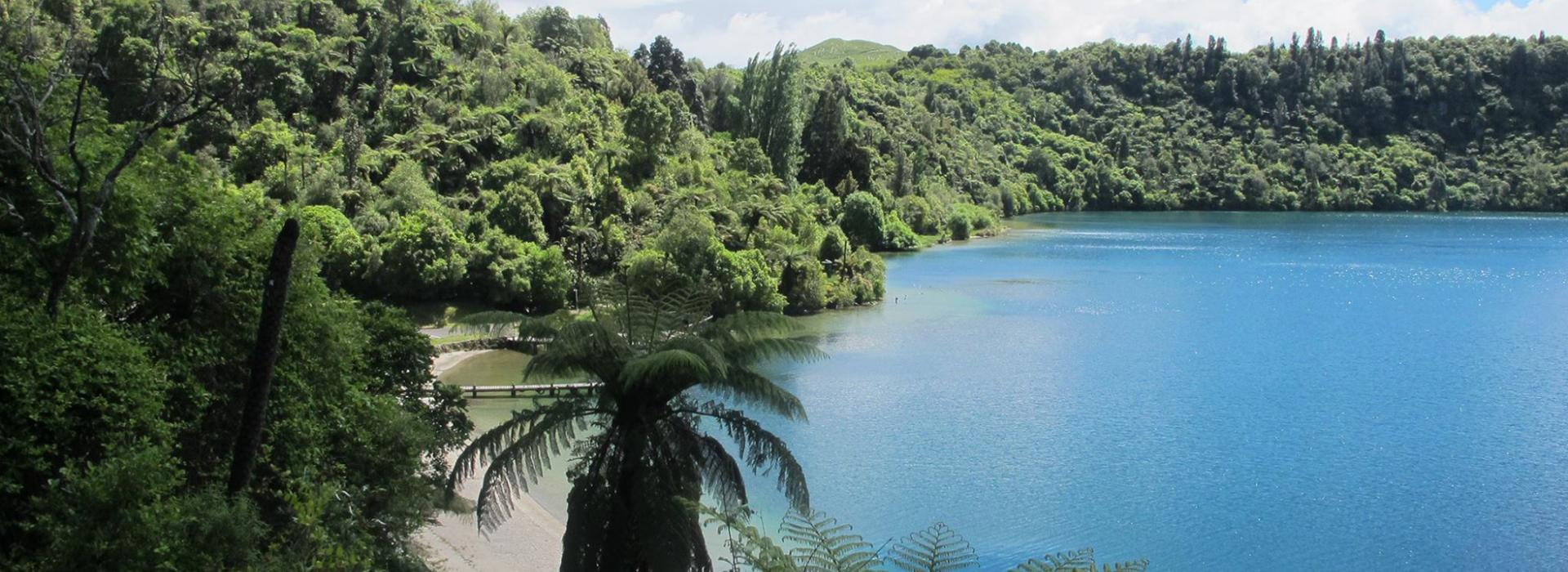 Blue Lake & Surrounding Bush, Rotorua, New Zealand