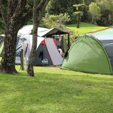 Powered Campsites - Tents